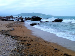 Cycles – A Love Letter to the Sea
