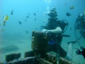 20,000 Millimeters Under the Sea