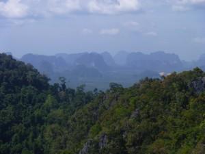 The 1237 Steps of Wat Tham Sua