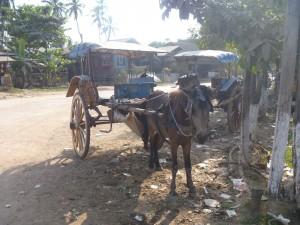 Solo Trip to Bilu Kyun (Ogre Island)