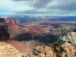 Courting Death in Canyonlands