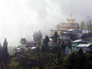 A Walk through the Mists in Darjeeling