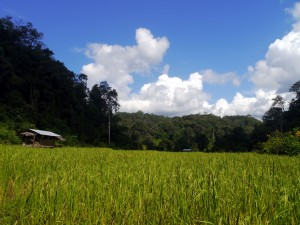 Caving and Visiting Hill Tribes in Northern Thailand