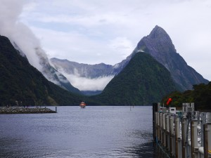 JUCY Cruise in Milford Sound