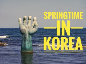 Springtime in Korea
